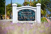 The City Of La Palma
