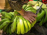 31 JANUARY 2013 - PHNOM PENH, CAMBODIA:  A market vendor cuts bananas to sell in Phnom Penh, Cambodia.   PHOTO BY JACK KURTZ