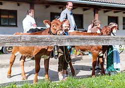29.04.2018, Maishofen, AUT, XII Weltkongress Pinzgauer Rind, im Bild Jungzüchter, Bambinis mit ihren Rindern // Young breeders, Bambinis with their cattle during the XII Pinzgauer cattle World Congress in Maishofen, Austria on 2018/04/29. EXPA Pictures © 2018, PhotoCredit: EXPA/ JFK