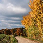 2015 October - Autumn Landscape