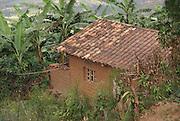 Rwanda, Virunga Mountains, mud hovel