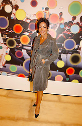NANCY DELL'OLIO at a reception to celebrate the opening of 'USA Today' - an exhibition of work from The Saatchi Gallery held at The Royal Academy of Arts, Burlington Gardens, London on 5th September 2006.<br /><br />NON EXCLUSIVE - WORLD RIGHTS