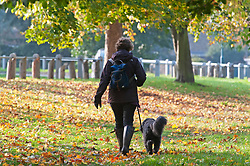 ©Licensed to London News Pictures 31/10/2019.<br /> Sidcup,UK. A cold autumnal October morning at Footscray Meadows on the River Cray, Sidcup, South East London. Photo credit: Grant Falvey/LNP