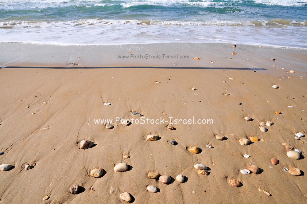 Pebbles and shells on the seashore