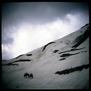Landscape of a trek in the Himalayas near Vishnasar Kashmir
