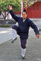 Taiji master Zhang Wenqin pracises his art at the Louguantai temple, Xian, Shaanxi, China. This temple is where Lao Tze wrote the basics of the Tao/Dao faith.
