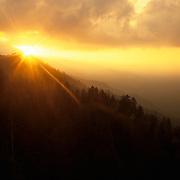 Dramatic sunset in Mt. Rainier National Park, WA.
