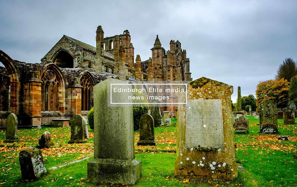 Autumn colour at Melrose Abbey in the Scottish Borders.<br /> <br /> (c) Andrew Wilson   Edinburgh Elite media