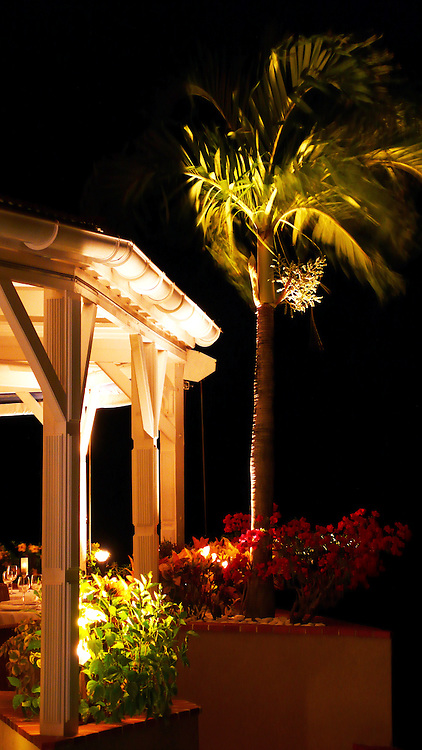 The side of a restaurant and palm tree in a tropical resort.