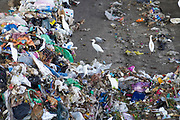 Domestic waste treatment centre. The waste dumped here after collection is sorted and processed using a specially designed mechanical biological treatment process. This process was designed by Israeli sanitation engineers, and this waste transfer station, in Hiriya, Israel, is the largest in the Middle East. It is operated by the local municipality, the Dan Association of Towns. Photographed at Hiriya waste dump located southeast of Tel Aviv, Israel.