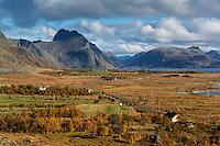 Autumn view of Vikjorden and surrounding mountains, Vestvågøy, Lofoten Islands, Norway