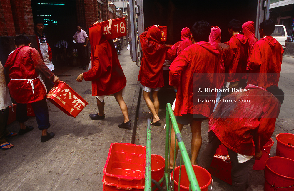 A group of red uniformed meat market traders manhandle joints of pork from the back of a meat wagon at Macau's main meat market, on the Rua Sul do Mercado de Sao Domingos, on 10th August 1994, in Macau, China. The market is just off the Avenida de Almeida Ribeiro, in Central Macau. The men have on hooded red tunics that hide the bloodstains of dead animal carcasses, a very practical choice of colour.  The Macau Special Administrative Region is one of the two special administrative regions of the People's Republic of China (PRC), along with Hong Kong. Administered by Portugal until 1999, it was the oldest European colony in China, dating back to the 16th century. The administrative power over Macau was transferred to the People's Republic of China (PRC) in 1999, 2 years after Hong Kong's own handover.
