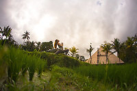 Maeve Nelligan in Ubud, Bali