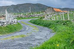 Winding road and old barn at Barnabaun Point, County, Mayo, Ireland