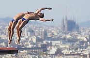 BCN2013 Diving men