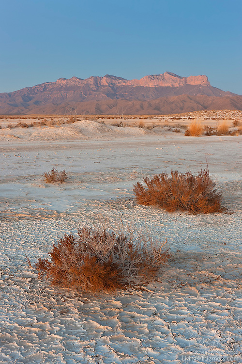 The Guadalupe Mountains of western Texas tower over the Salt Basin, a remnant of an ancient lake that existed during the Pleistocene Epoch between 10,000 and 1.8 million years ago. The lake, which at times was up to 37 feet deep, had no outlet. As the water evaporated, salt and gypsum accumulated. The old lake bed is now dry most of the year, collecting only an inch or so of water during exceptionally heavy rains. The Guadalupe Mountains, part of Guadalupe Mountains National Park, are visible on the horizon. The iconic El Capitan (8085 feet/2464 meter) is visible at right. Guadalupe Peak, the highest point in Texas at 8749 feet (2667 meters) is immediately left of it.