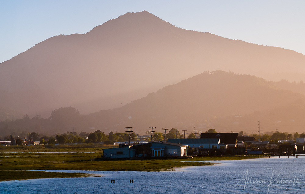 Mount Tamalpais viewed at sunset from the water of  San Francisco bay