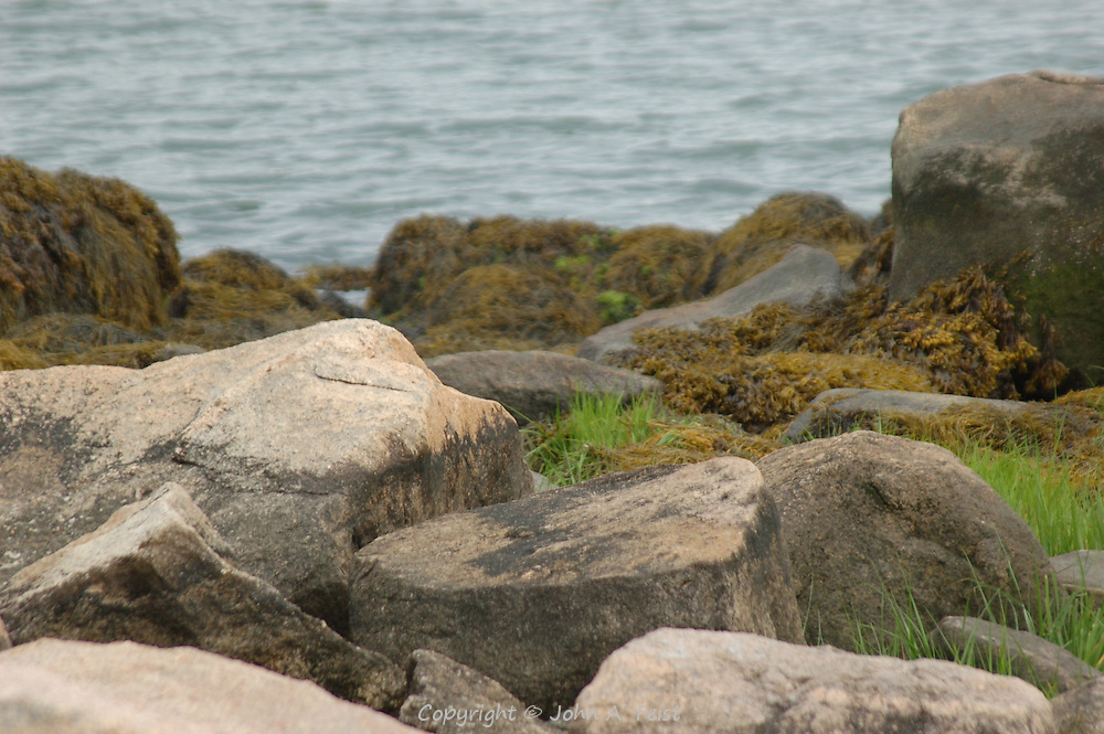 A little piece of the shore of Long Island Sound at Stone Creek, CT.