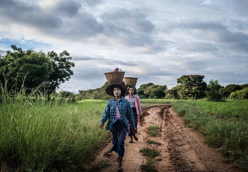 Ladies returning from the fields in Bagan.