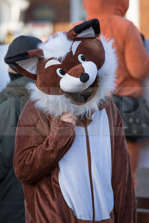 © Licensed to London News Pictures. 26/12/2016. Market Bosworth, Leicestershire, UK. The Boxing Day meet of the Hunt in Market Bosworth, Leicestershire. Pictured, Anti-Hunt protestors were also at the meeting. Photo credit: Dave Warren/LNP