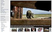 Kenya, Zebra relocation - The BBC.