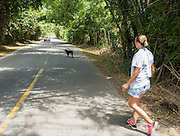 Chrissy Beckles approaches a stray dog in a road near Guaynes Beach, Puerto Rico.  Attempts to rescue the dog were unsuccessful.
