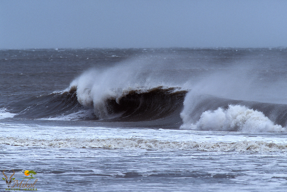 Wind blowing and wave crashing from Hurricane Charley