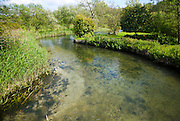 Clear water of meandering River Kennett chalk stream at Axford, Wiltshire, England