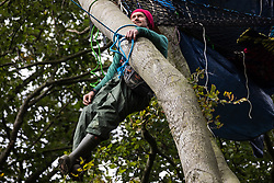 Aylesbury Vale, UK. 5th October, 2020. Daniel Marc Hooper, better known as environmental activist Swampy, assists fellow anti-HS2 tree protectors from a makeshift tree house about sixty feet above ground at a wildlife protection camp in ancient woodland at Jones' Hill Wood. The Jones' Hill Wood camp, one of several protest camps set up by anti-HS2 activists along the route of the £106bn HS2 high-speed rail link in order to resist the controversial infrastructure project, is currently being evicted by National Eviction Team bailiffs working on behalf of HS2 Ltd.