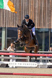 Vereecke Andres, BEL, Orfatrice DW<br /> Belgian Championship 6 years old horses<br /> SenTower Park - Opglabbeek 2020<br /> © Hippo Foto - Dirk Caremans<br />  13/09/2020