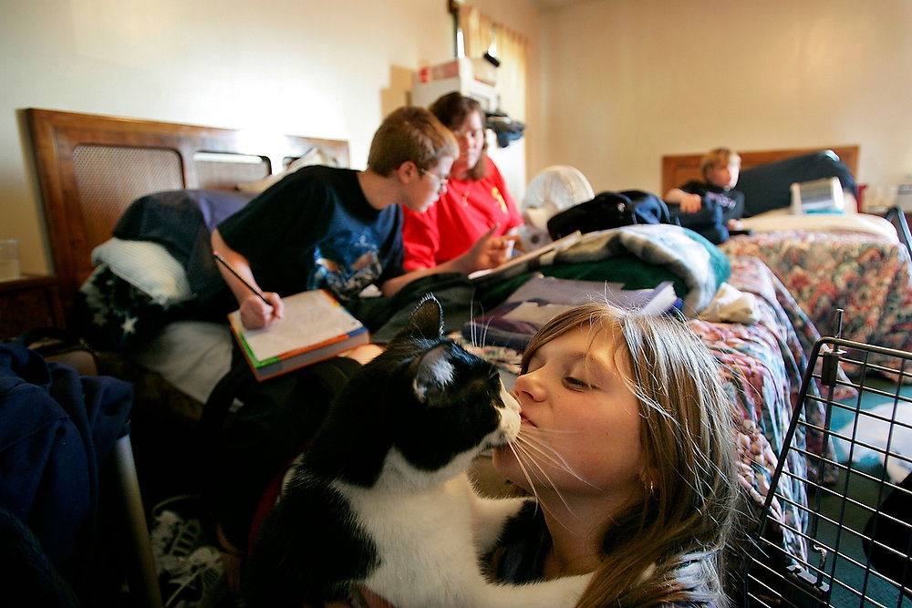 """Trying to Get By:<br /> Lisa, 10, kisses """"Bootsy"""" the cat while her brother Larry, 13, watches TV in their room at Gene's Motel as her other brother Larry, 11, works to finish his homework with help from their mother Ginger Sweeney prior to leaving for school. The family woke up for the first time in months in the comfort of a room ... not a tent after anonymous donor paid for a two week stay at the hotel."""