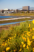 Newport Beach Back Bay