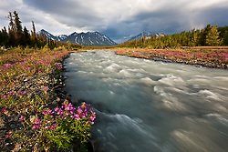 River beauty lines Quill Creek, Kluane National Park, Yukon
