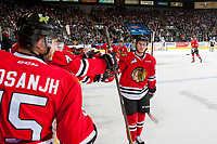 KELOWNA, CANADA - APRIL 14: Matt Revel #18 of the Portland Winterhawks celebrates a second period goal against the Kelowna Rockets on April 14, 2017 at Prospera Place in Kelowna, British Columbia, Canada.  (Photo by Marissa Baecker/Shoot the Breeze)  *** Local Caption ***