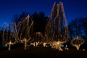 Millions of lights are strung in trees at the Way of Lights holiday light display at the National Shrine of Our Lady of the Snows in Belleville in this photo taken December 3, 2019. This is the 50th anniversary of the annual light display, which runs from 5 pm to 9 pm through December 31.<br />Photo by Tim Vizer