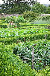 The parterre beds at Parham House