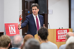 © Licensed to London News Pictures . 13/05/2016 . Sheffield , UK . Former Labour Party leader , ED MILIBAND , delivers a speech in favour of the Remain in EU campaign and on the subject of climate change , at King Edward VII Upper School in Sheffield . Photo credit: Joel Goodman/LNP