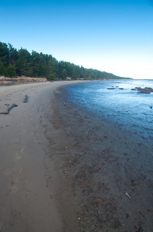 Beach at Leadbetter Point State Park, Long Beach, Washington, US
