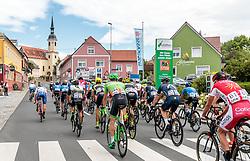 03.07.2017, Wien, AUT, Ö-Tour, Österreich Radrundfahrt 2017, 1. Etappe von Graz nach Wien (193,9 km), im Bild Peleton in Kaindorf // during the 1st stage from Graz to Vienna (193,9 km) of 2017 Tour of Austria. Wien, Austria on 2017/07/03. EXPA Pictures © 2017, PhotoCredit: EXPA/ JFK