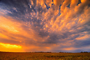 Sunset onthe Canadian prairie<br /> Inglis<br /> Manitoba<br /> Canada