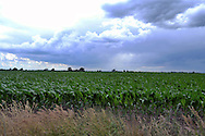 Storms in the midwest.