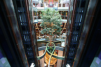 Celebrity Silhouette. Celebrity cruises' new ship launched in Hamburg 21st July 2011..Interior feature photos..Lift atrium with tree..