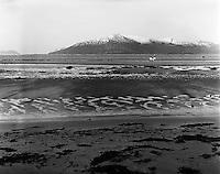 Vigra 20120420. <br /> En svart og en hvit hest på Roaldsanden på Vigra. I bakgrunnen ser man fjellet Gamlemsveten halveis dekt med snø.<br /> Foto: Svein Ove Ekornesvåg