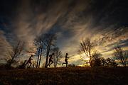 Leaders at the Mid Maryland 50K Ultramarathon traverse a ridge at dawn.