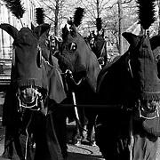 Begrafenis Slot Zeist koets + paarden