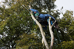 Daniel Marc Hooper, better known as environmental activist Swampy, assists fellow anti-HS2 tree protectors from a makeshift tree house about sixty feet above ground at a wildlife protection camp in ancient woodland at Jones' Hill Wood on 5 October 2020 in Aylesbury Vale, United Kingdom. The Jones' Hill Wood camp, one of several protest camps set up by anti-HS2 activists along the route of the £106bn HS2 high-speed rail link in order to resist the controversial infrastructure project, is currently being evicted by National Eviction Team bailiffs working on behalf of HS2 Ltd.