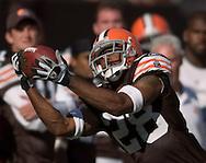 COPYRIGHT DAVID RICHARD.Cleveland defensive back Leigh Bodden intercepts a Carson Palmer pass to help preserve the Browns win over Cincinnati..The Cleveland Browns defeated visiting Cincinnati 51-45, Sunday, September 16, 2007..