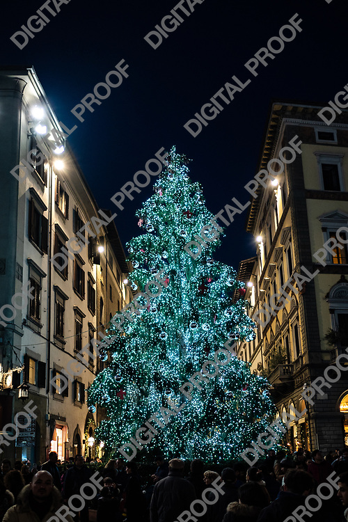 Firenze, Tuscany Italy - December 30, 2018 Florence Christmas Tree Lights at night vertical crop