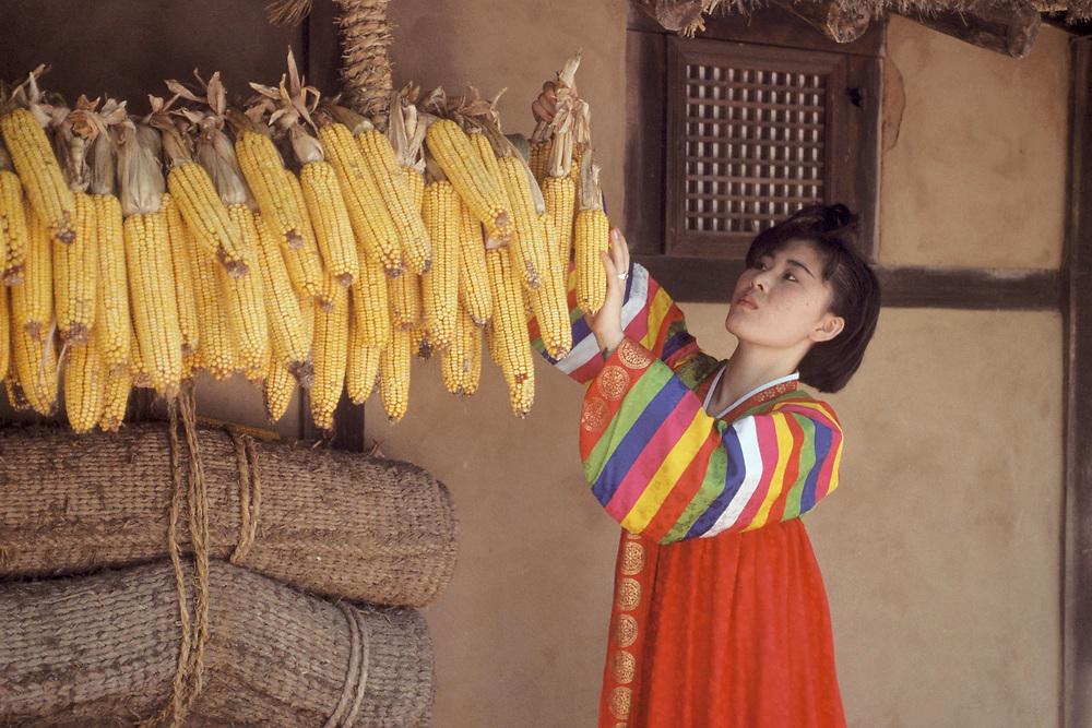 Young Korean woman in hanbok, traditional Korean dress, hanging shucked ears of corn in Korean Folk Village near Seoul.<br /> ©Bob Daemmrich