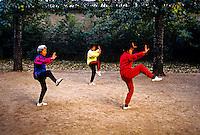 Early morning tai chi, Tiantan Park, Beijing, China